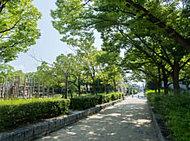 椀田公園 約480m(徒歩6分)