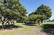 美濃町公園 約200m(徒歩3分)