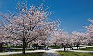 におどり公園 約240m(徒歩3分)
