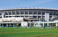 新横浜公園しんよこフットボールパーク 約700m(徒歩9分)