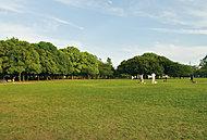 岸根公園 約1,140m(徒歩15分)