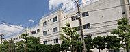 奥戸中学校 約1,350m(徒歩17分)