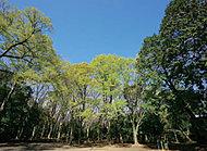 八幡町緑地 約190m(徒歩3分)