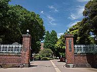 東京藝術大学上野キャンパス 約1,100m(徒歩14分)