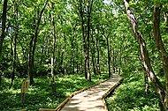 都立小宮公園 約1,070m(徒歩14分)
