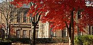 旧東京音楽学校奏楽堂 約1,7km(徒歩22分)※1