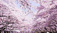 都立上野恩賜公園 約920m(徒歩12分)
