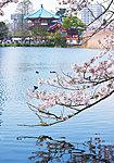 上野桜木あたり 約1,580m(徒歩20分)
