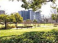 白川公園 約100m(徒歩2分)
