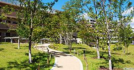 敷地の北面を巡るエリアに設けられたのは、この地の緑豊かな自然を継承する「木漏れ日の庭」。風が通り抜ける樹間を散策する小径で、心癒される時間をお愉しみください。