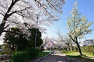 元茨木川緑地 約310m(徒歩4分)