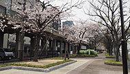 堀田公園 約500m(徒歩7分)