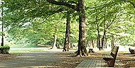 野川公園 約3.1km(徒歩39分)