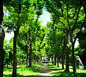 中津公園 約100m(徒歩2分)
