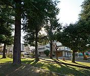 平和の森記念公園 約300m(徒歩4分)