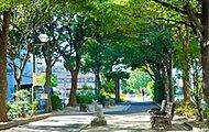 葛西親水四季の道 約220m(徒歩3分)