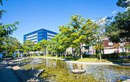 新長島川親水公園 約880m(徒歩11分)