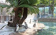 江戸川区自然動物園 約1,370m(徒歩18分)