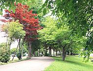錦中央公園 約180m(徒歩3分)
