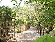 高砂緑地 約340m(徒歩5分)