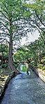 西川緑道公園 約270m(徒歩4分)