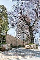 それは、躍動の都市生活を謳歌する、静麗な桜花の127邸。