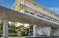 三郷中央総合病院 約240m(徒歩3分)