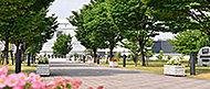 におどり公園 約1,030m(徒歩13分)