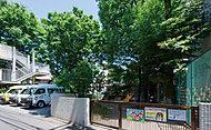 赤羽幼稚園・こども園 約560m(徒歩7分)