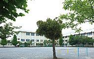 堀切小学校 約310m(徒歩4分)