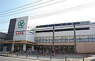 ライフ宮内二丁目店 約614m(徒歩8分)