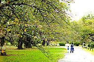 小石川植物園 約m1,340(徒歩17分)