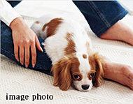 可愛いペットと一緒に暮らすことができます。※ペットの種類や大きさ、数など制限があります。詳しくは、係員にお尋ね下さい。