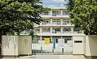 西東京市立栄小学校 約830m(徒歩11分)