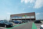 ホームセンターコーナン南流山店 約180m(徒歩3分)