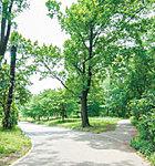 江古田の森公園 約1,510m(徒歩19分)