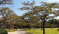 中央公園 約1,050m(徒歩14分)
