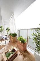 バルコニーには住戸の開放感を高める、半透明のガラスパネルを採用。また、天井にはグリーンフックを設け、陽射しを和らげるシェードを付けたり、グリーンカーテンを育てたりなど、楽しめるバルコニーを目指しました。