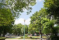 十八条東公園(新駅8号公園) 約110m(徒歩2分)