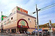 ライフ経堂店 約580m(徒歩8分)