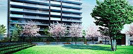「陽だまり公園(自主管理公園)」を望む住居棟「パーク」は陽光あふれる南向き。将来的にも環境が変わることなく、明るく、開放感あふれる暮らしを実現できます。