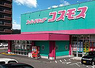 ディスカウント・ドラッグコスモス新下関店 約580m(徒歩8分)