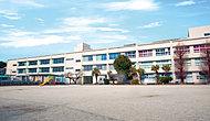 飯塚小学校 約400m(徒歩5分)