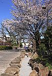 北沢川緑道 約150m(徒歩2分)