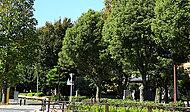 北沢川緑道・ユリの木公園 約980m(徒歩13分)