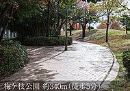 梅ヶ枝公園 約340m(徒歩5分)