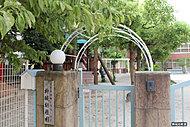 柳城幼稚園 約560m(徒歩7分)