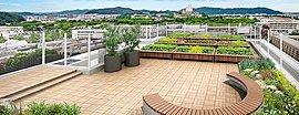 姫路城周辺に色濃く残る緑景と調和するように、屋上にはここに住まうすべての方が歓びを共有できるプライベートガーデンを描きました。庭園入口にはおもてなしの心を込めて「幸せを運ぶ木」と称されるオリーブのウエルカムツリーをプランニング。