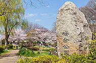 桜台公園 約360m(徒歩5分)