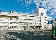 江東区立元加賀小学校 約420m(徒歩6分)